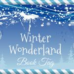 Winter Wonderland Book Tag [Spécial Fêtes]